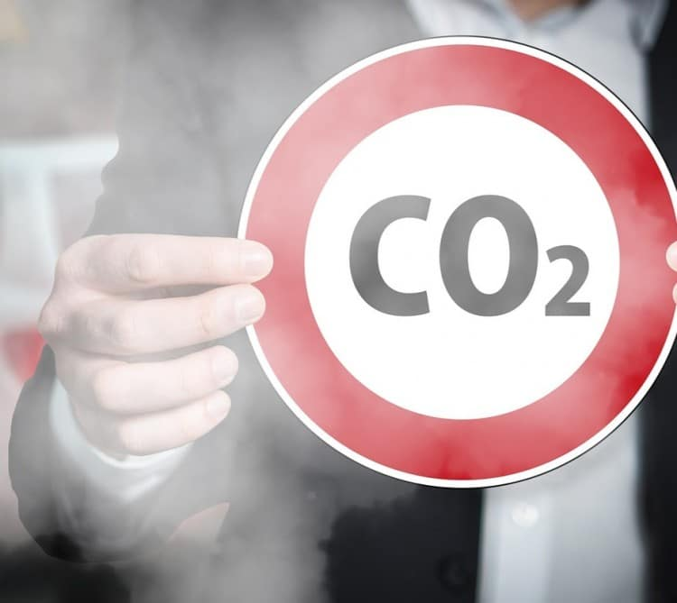 Klimawandel: Wien wird CO2 neutral